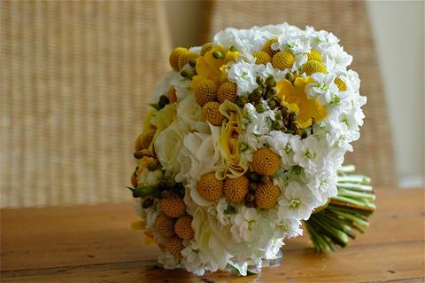 Soft hand tied mix of yellow craspedia-white roses, spray roses and hydrangeas