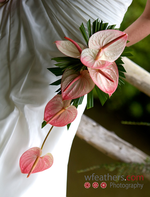 A shower style bouquet of anthuriums with cut palm leaves