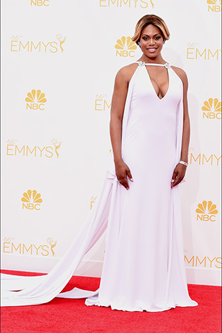 emmy awards 2014 14