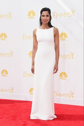 emmy awards 2014 22