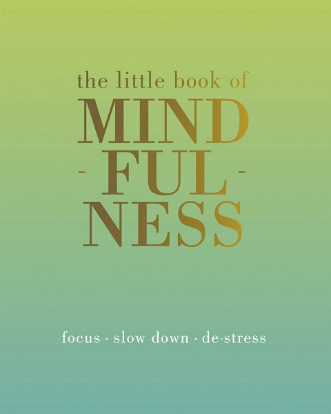 self help book review, the little book of Mindfulness
