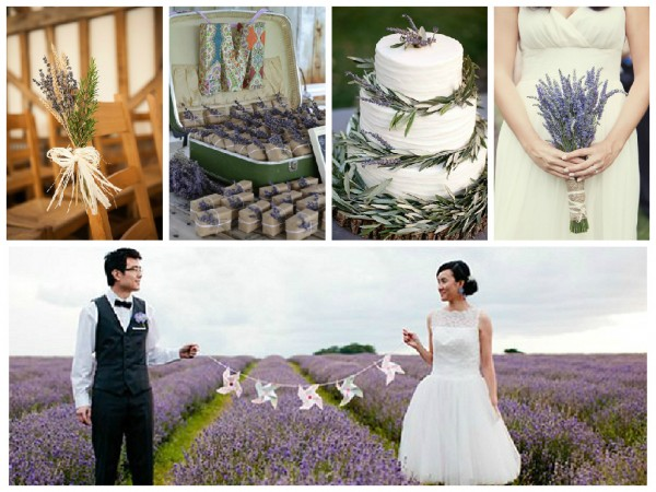 This year plan a....Lavender Wedding