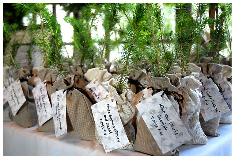 Tree seedling favours - Equallywed.com