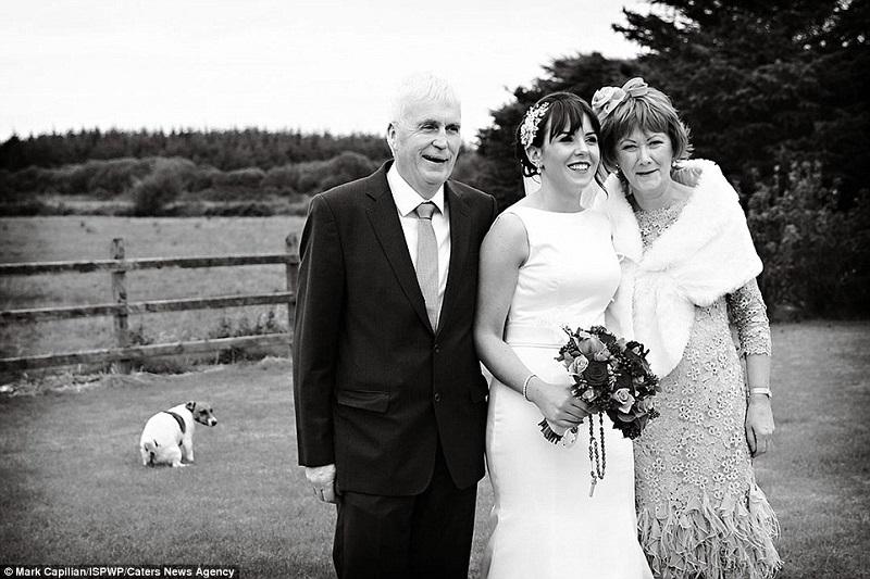 The funniest wedding photos ever!