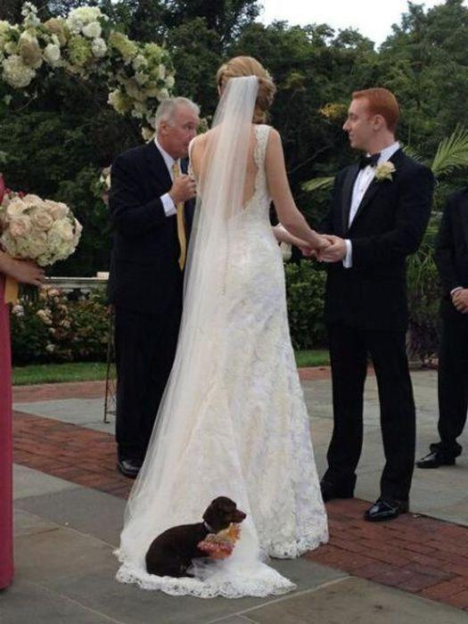 wedding day fails - veil free-riders