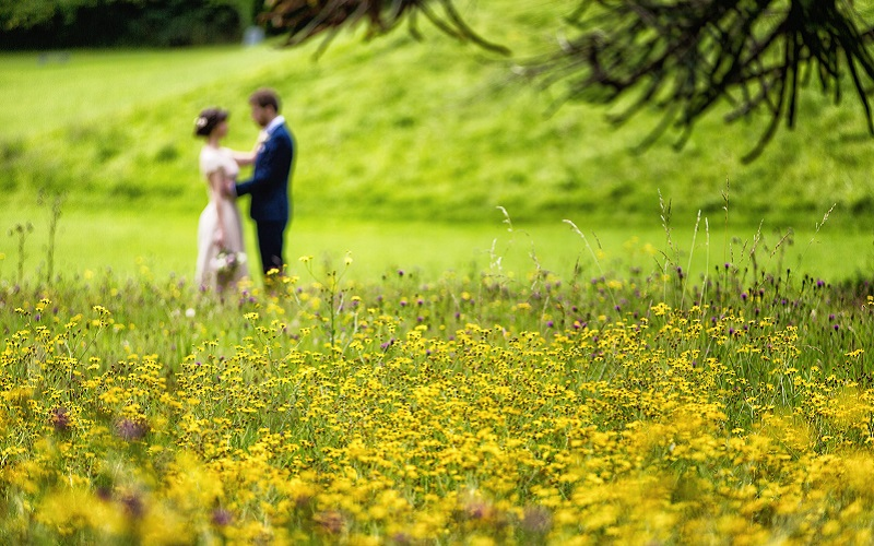 bride and groom in meadow 2