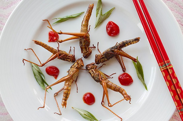 superfoods 2015, edible insects