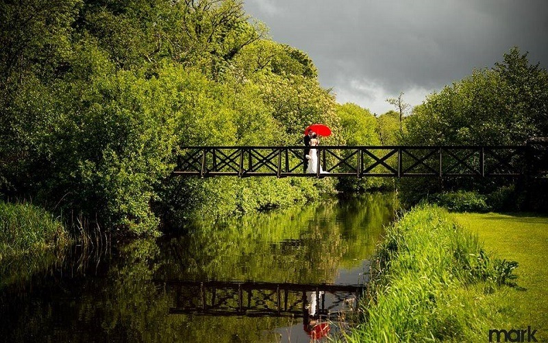 married couple on a bridge with umbrella