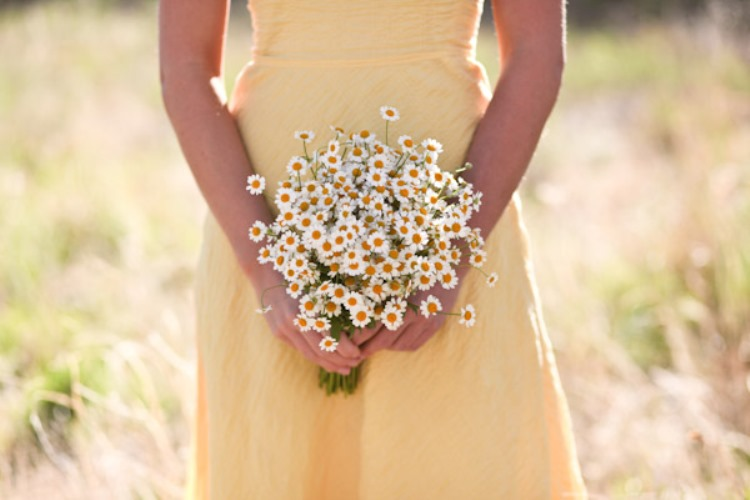 wild daisies wedding inspiration