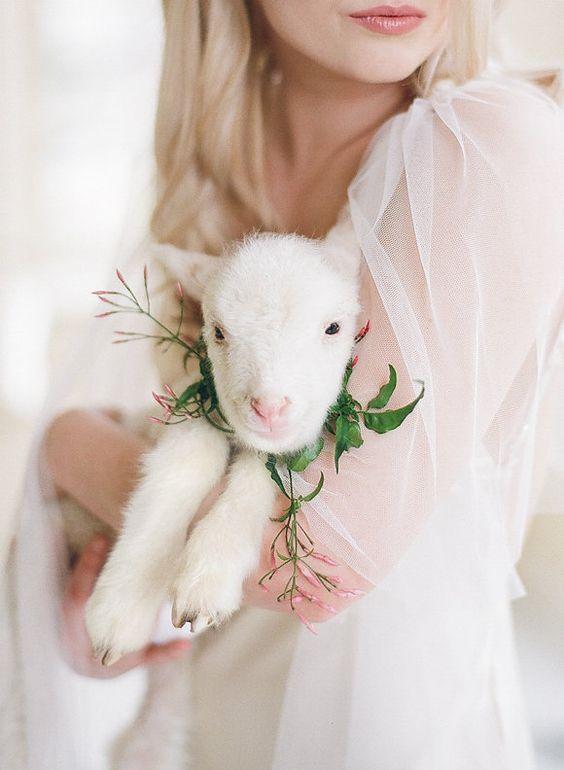 easter wedding inspiration bunnies 3