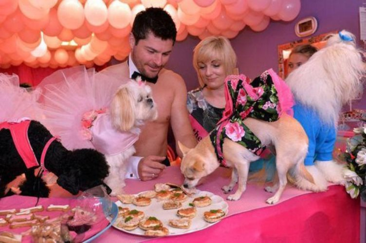 chihuahua has decadent hen do 2