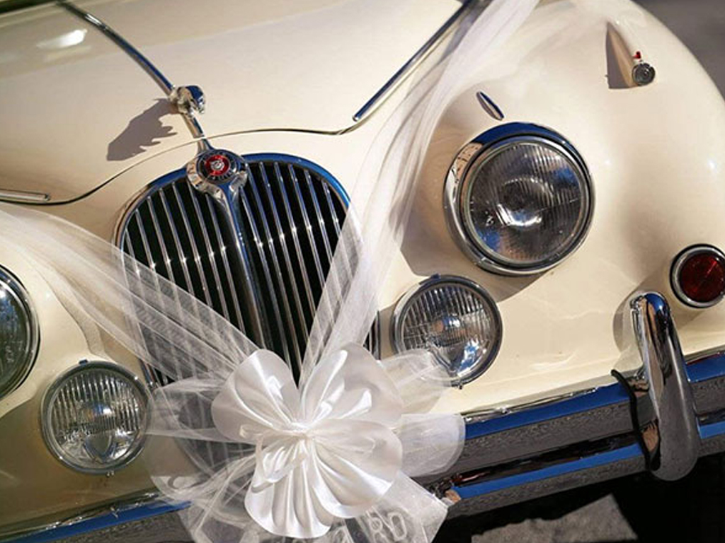 Wedding Journal Online - Transport