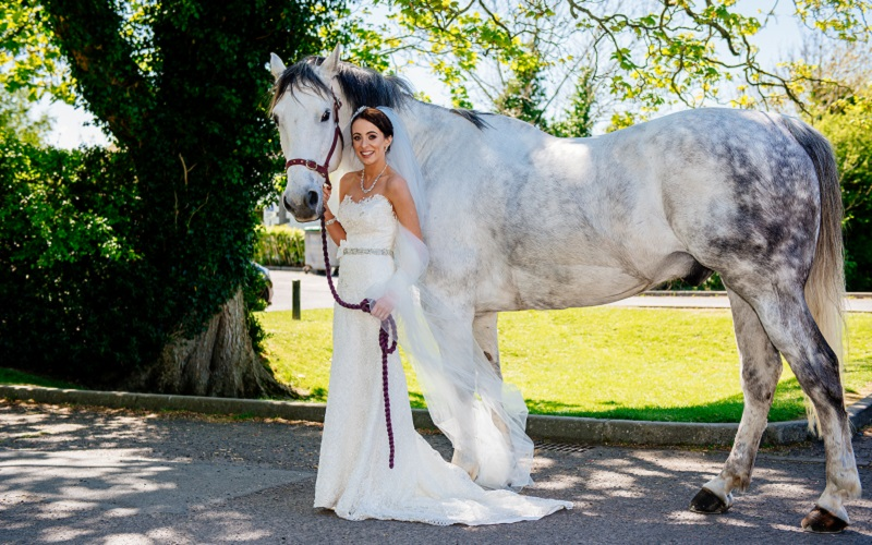 bride and white horse